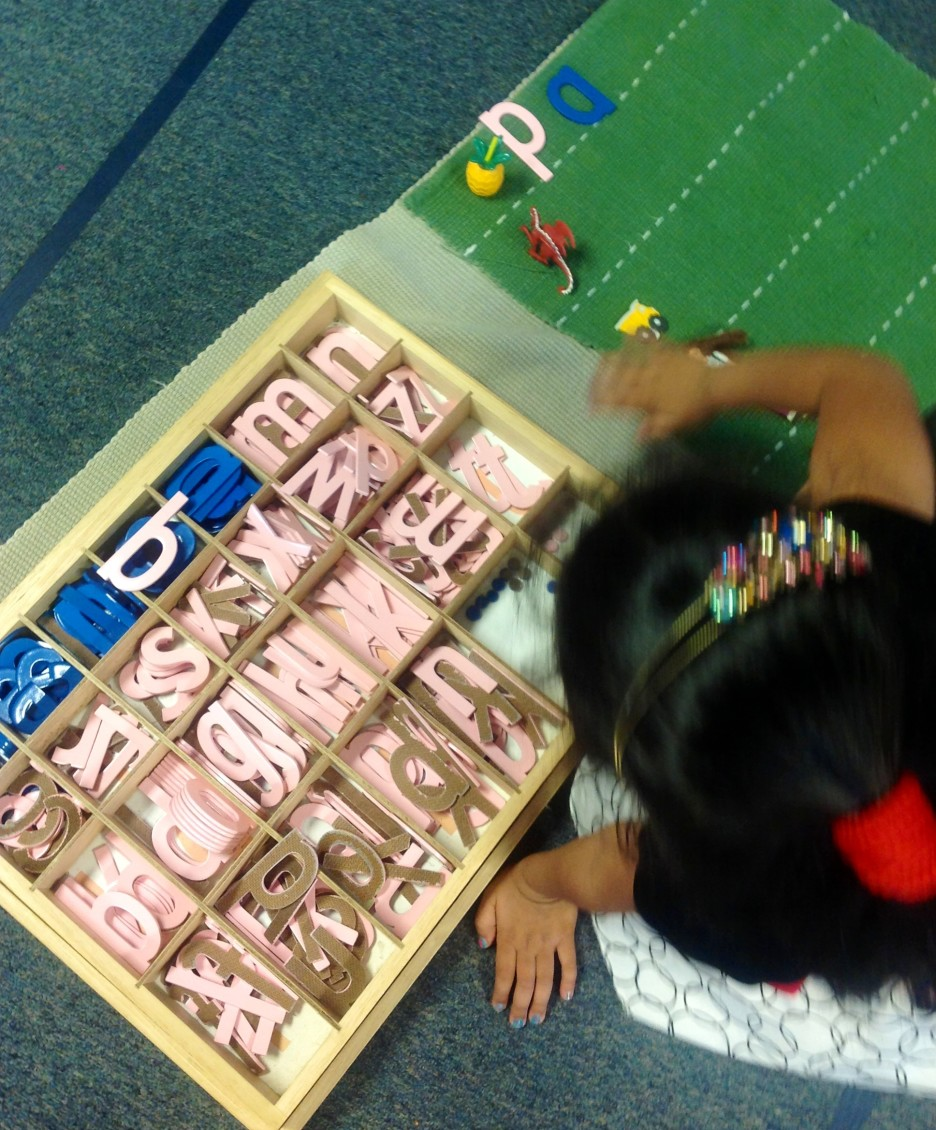 montessori-movable-alphabet