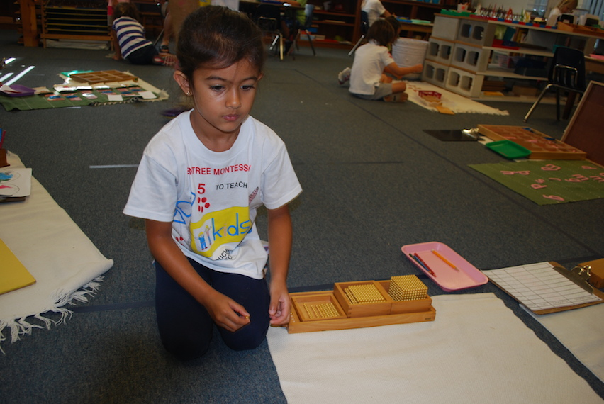 melbourne_fl_montessori_scores_perfect_vpk_readiness