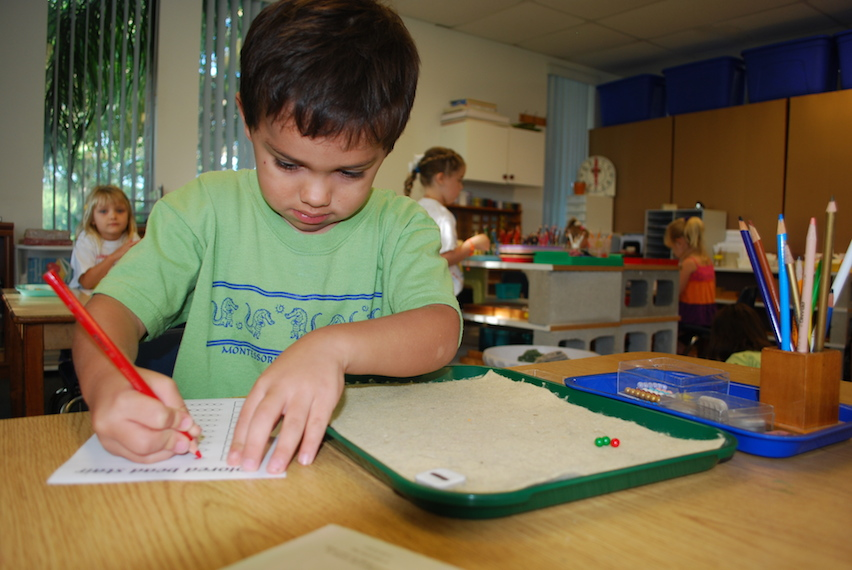 montessori_transitions_into_within_beyond